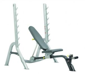 Hoist Olympic Adjustable Bench with bars and weights