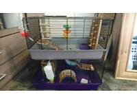 Hamster Cage with loads of Accessories