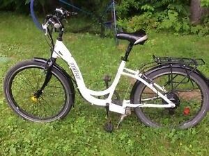 Bicyclette à moteur
