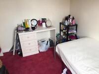 Single Room to Rent 100 pw