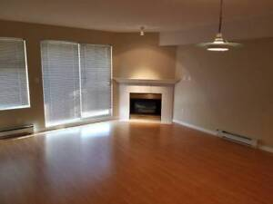 Spacious 1 Bedroom Apartment For Rent (North Facing) (Burnaby)