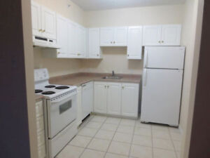 1 Bedroom available October 1 on Parkland Drive