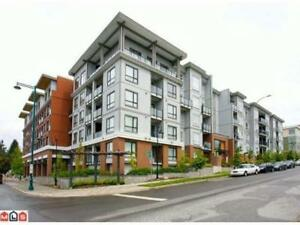 Quatro 1 - Bright 2 Bdrm 2 bath CORNER, 4th floor unit
