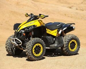 Wanted: Can am Renegade 800