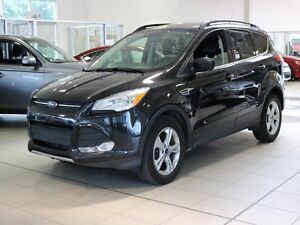 2015 Ford Escape SE RCAM