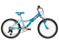 Trek MT60 dialed suspension kids bike