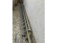 3 meter ladder