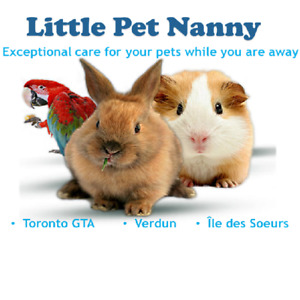 Expert Pet-Sitter and Dog Walkers