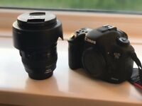 Canon EOS 7D Mark II &Canon EF 24-105mm f/4.0L Is USM Lens