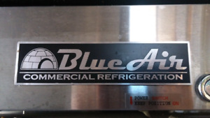 Blue Air Commercial Double Door Refrigeration