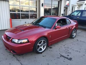 Ford mustang svt cobra supercharged 2004