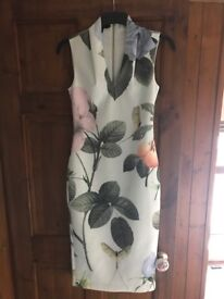 Ted baker dragonfly dress size 2 (10)