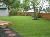 Sod installation at $1.00 per sqft
