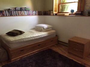 Captains bed with night table 100$