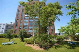 Unit 1202: Updated Charter House Condo w. City Views