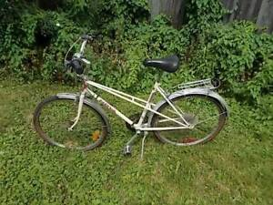 cruiser bike 12 speeds with EXTRAS   YES AVAILABLE