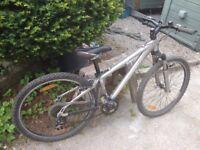 Child's Mountain Bike (13 inch frame, 26 inch wheel, 8 speed, V Brakes)