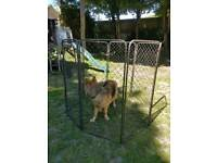 Dog enclosure pen fence