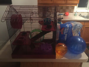 Hamster or small rodent setup!