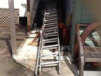 Ally double ladder