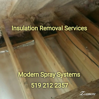 INSULATION AND VERMICULITE REMOVAL