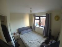 Cosy, clean single room available for rent