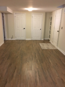 Renovated Spacious 2 br. Lower Level Unit-Heart of Richmond Hill