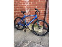Brand New Free Spirit Tracker Mountain Bike