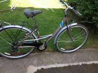 "Saracen hybrid women bike 700x38c wheels ,17"" aluminium frame,7 gears,mud guards, fully working"