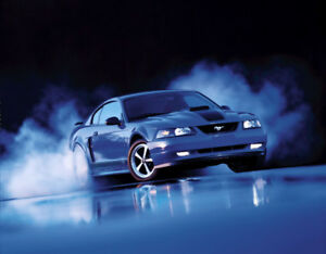 Looking for 2003 2004 Mach 1 Mustang