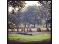 OUTDOOR FITNESS CLASSES AT CLAPHAM COMMON - TRANSFORM YOUR LIFE NOW