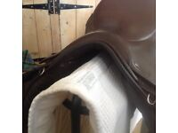 GP saddle