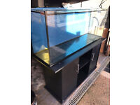 Large fish tank with stand open to reasonable offer