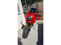 "Ducati Multistrada 1100s RED 2008 ""Cat C"""