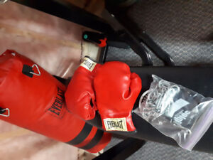 boxing bag, gloves and installation hardware