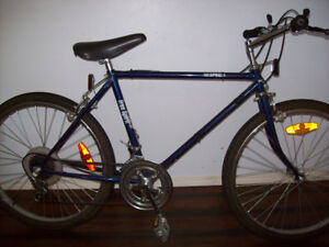 Youth Bike 10 Speed with Helmet in Great Condition