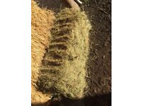 Quality Hay Bales suitable for rabbits/horses/livestock