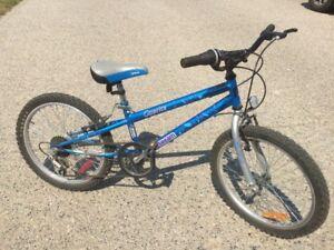 "Blue Dream Caprice Girls Bike 20"" 5 speed"