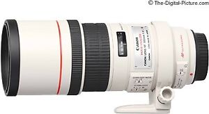 Canon 300mm f4 IS