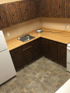 2 bedroom Condo for rent 34  nollet apt 105 available now