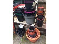 Assorted plastic pots