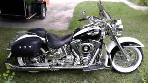 Beautiful Softail Delux