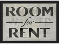 Double room for rent for a boy or a girl