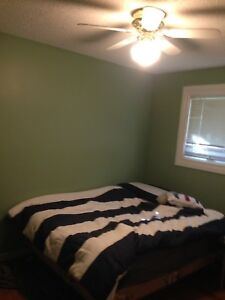 2 or 1 furnished bedroom for rent available Sept 1