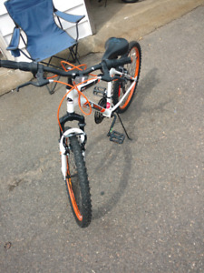 Newer bicycle