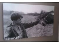 REDUCED! Brand new beatiful Kes canvas 24x16 inches was £40 now only £18!!