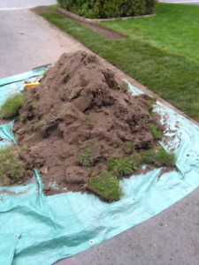 FREE FILL, Mix of sod and top soil.