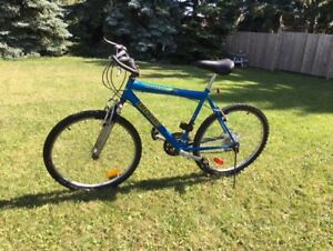 "19"" Mountain Bike, 26""1.95"" tires, steel frame, good condition"