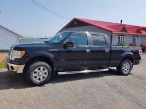 2010 Ford F-150 XLT Camionnette