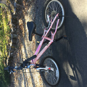 Girls mountain bike in excellent condition.